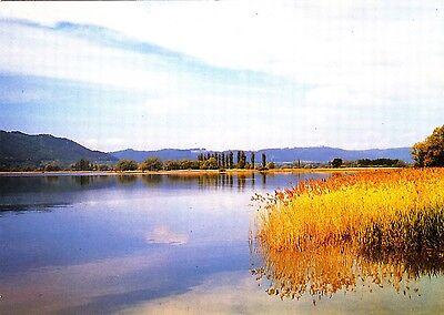 Die Bodenseelandschaft ,gelaufene Ansichtskarte