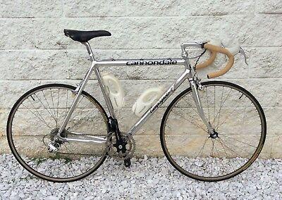 54c5ebb83c0 Cannondale Team Campagnolo Road Racing Bike ~ Campagnolo Components, 58cm