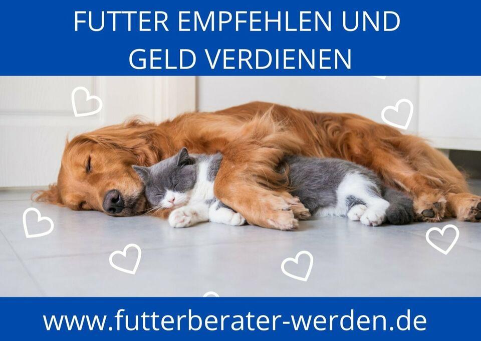 ✅ Lukrativer Nebenjob als Futterberater*in für Hunde & Katzen in Gotha