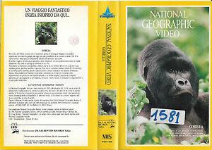 NATIONAL-GEOGRAPHIC-GORILLA-1981-vhs-ex-noleggio
