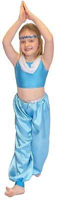 ARABIAN PRINCESS/Aladdin/World Book Day/ JASMINE Fancy Dress Costume ALL AGES