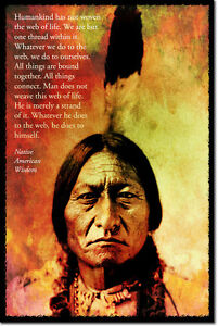 NATIVE AMERICAN WISDOM ART PHOTO PRINT POSTER GIFT WEB OF LIFE QUOTE