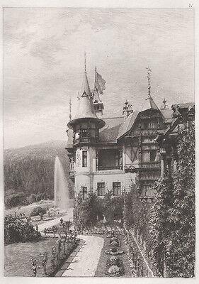 Südliche Ansicht des Schlosses Pelesch, Radierung 1893