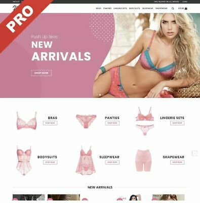 Lingerie Store Ultimate Profitable Business Dropshipping Website Ecommerce