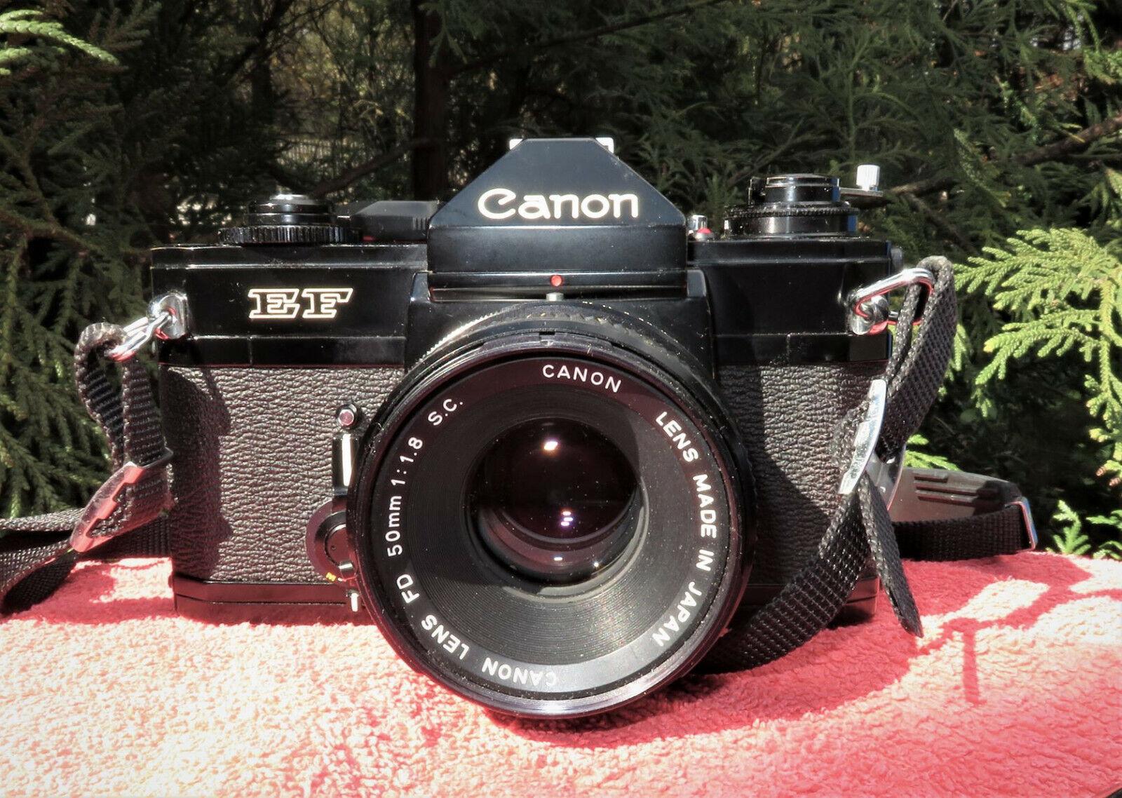 CANON EF  Spiegelreflex Kamera mit Canon Koffer