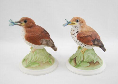 Boehm Porcelain BABY WOOD THRESH #444 Bird Figurine Sculpture Pair (2x)