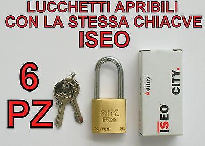 6 LUCCHETTI ISEO APRIBILI CON LA STESSA CHIAVE STESSE CHIAVI UNICA ARCO LUNGO 25