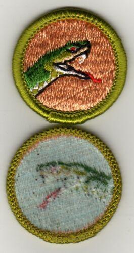 Reptile Study Merit Badge, Type H, Blue Back Version (1971-1975), Mint!