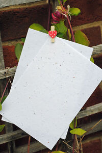 Plantable-Seeded-Paper-Card-A5-x-10-sheets