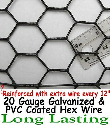 "Chicken Wire Fence 2' x 150' PVC Coated UV 1"" Hex Poultry Aviary Bird Fencing"