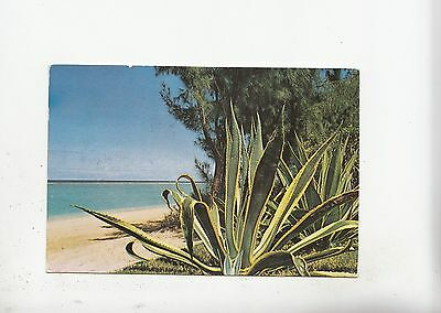 Image BF17979 albion beach pearl of th l ile maurice mauritius types  front/back image