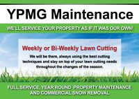 Grass Cutting and Lawn Services in Durham