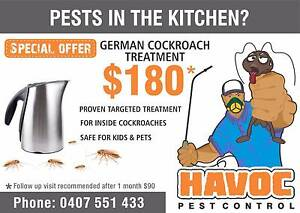 Proven pest treatment for German cockroaches inside the house Singleton Singleton Area Preview