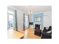 Large double room in fantastic spacious apartment