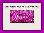 Hornsby's House of Treasures