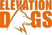 Doggy Day Care and Boarding Kennel Elevation Dogs