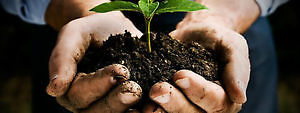 TOP SOIL -Triple Mix- Peat Loam-Free Delivery..NOW OPEN..!