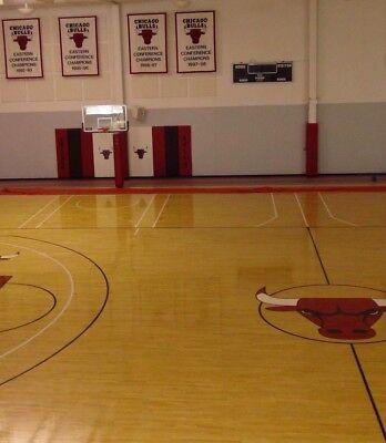 Original Basketball Hoop Used by Michael Jordan & Champion Chicago Bulls team