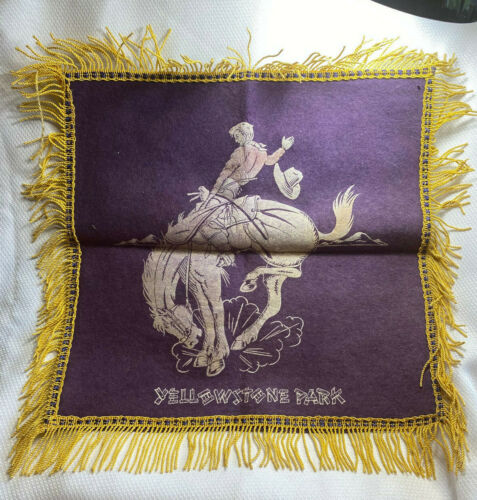Vtg Yellowstone National Park Cowboy Rodeo Horse-riding Fringed Pillow Case