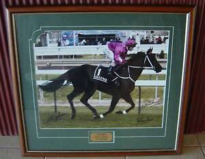 LONHRO - SON OF OCTAGONAL - PROFESSIONALLY FRAMED - THREE SIGN/S Cooranbong Lake Macquarie Area Preview
