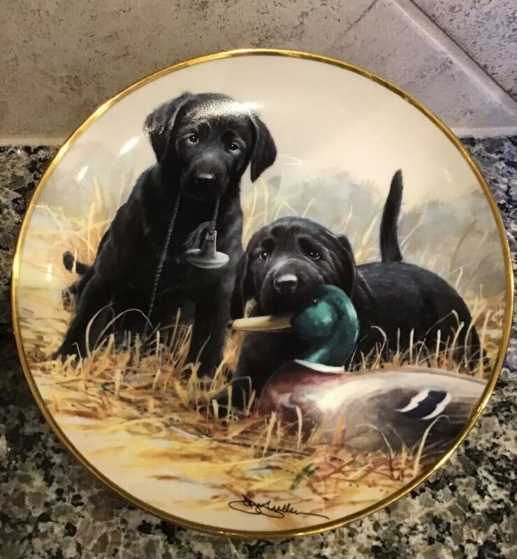 """FRANKLIN MINT LIMITED EDITION """"Beginners' Luck"""" Plate # J8520 Fine Porcelain NEW"""