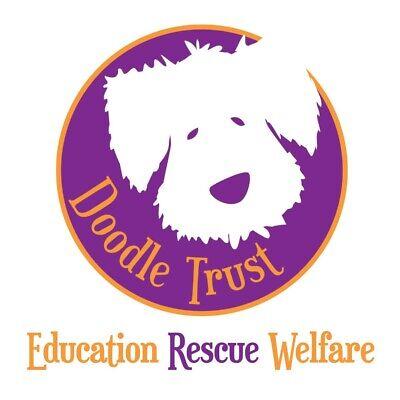 Doodle Trust