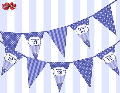 13th Birthday Party Themes (Brilliant Blue Happy 13th Birthday Vintage Polka Dots Theme Bunting Banner)