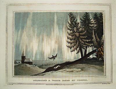 Hasenjagd Falke Falkner  seltener altkolorierter Kupferstich in Aquatinta 1813