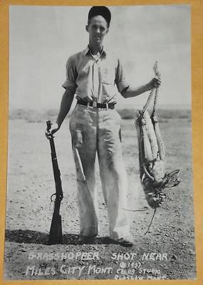 FREAKY WEIRD Odd Creepy Strange Grasshopper Hunter VINTAGE PHOTO 4x6 Spooky 338