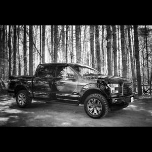 2016 Ford F-150 special edition 302 package