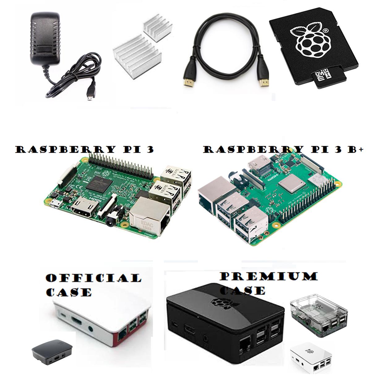 Raspberry Pi 3 & B+ 16GB Complete Starter Kit: SD, Case, Power, HDMI, Heat-sinks