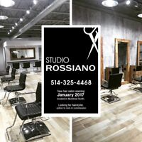 Montreal Nord looking for hairdresser with clientel
