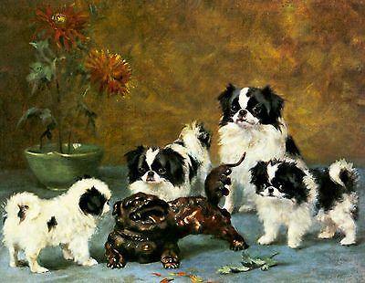 Japanese Chin Puppies Dog Puppy Dogs Puppies Vintage Art Poster Print