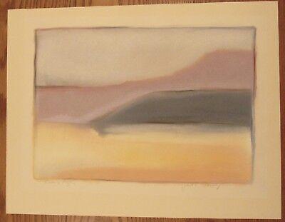 "Signed Gail C. Flanery pastel landscape Rivers Edge 19.5x25.5"""