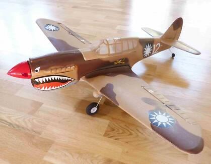 P40 Warhawk Parkflyer RC plane