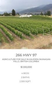 Own Your Own Vineyard that Helps Cover the Mortgage Payments