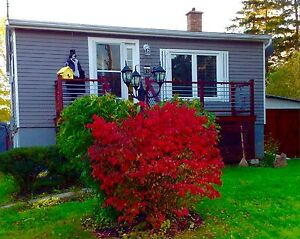 Fully renovated cozy 3 bedroom home