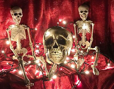 Halloween 4er Skelett / Schädel / Lichterkette / 80LED / Totenkopf / Deko Set