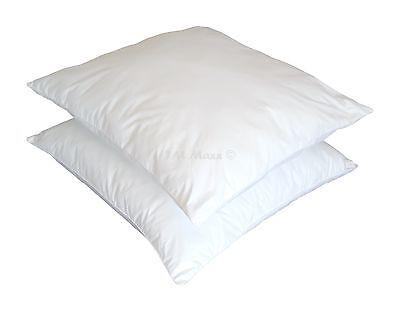 2 Stück-1Set Preis Kopfkissen Kissen 95%Gänsefedern-5%Daunen Füllung 2000g 80x80