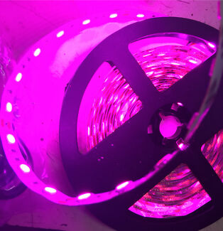 Led strips in adelaide region sa other lighting gumtree 5m roll of adhesive pink led strip cuttable aloadofball Image collections