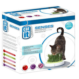 Catit Senses Grass Garden Kit for Cats Kittens NEW Free P+P