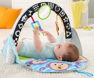NEW IN BOX Fisher-price activity gym