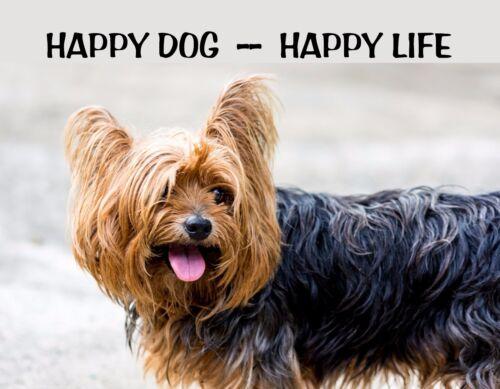 METAL REFRIGERATOR MAGNET Yorkshire Terrier Yorkie Happy Dog Happy Life Humor