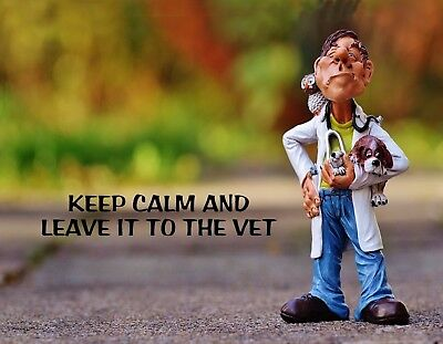 METAL REFRIGERATOR MAGNET Keep Calm Leave To Vet Humor Veterinarion Dog Bird