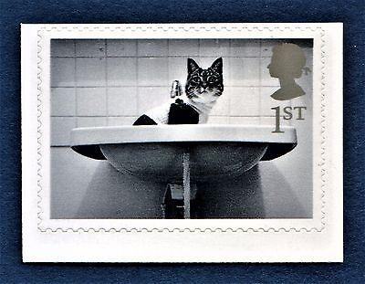 "GB ""Cat in Washbasin"" Black and White self adhesive stamp 2001 Stamp Cute - U/M"