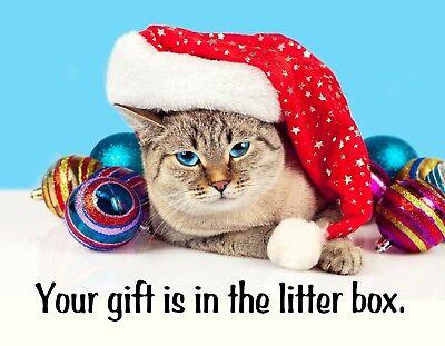 Litter Magnet - METAL FRIDGE MAGNET Christmas Cat Santa Hat Your Gift Is In The Litter Box Humor