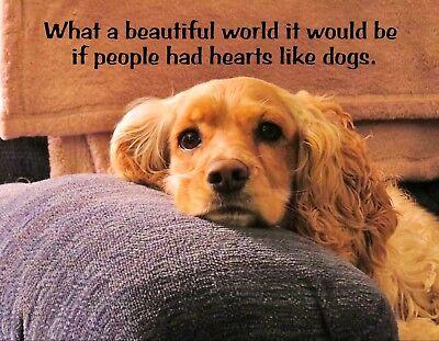 METAL FRIDGE MAGNET What Beautiful World If People Had Hearts Like Dogs Dog Love Heart Fridge Magnet