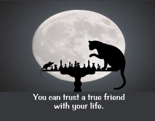 METAL REFRIGERATOR MAGNET Cat Mouse Playing Chess Trust True Friend With Life
