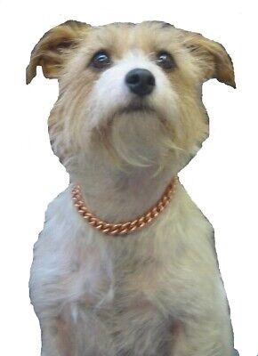 """COPPER MAGNETIC THERAPY DOG CHAIN COLLAR (6"""" -  12"""" )"""