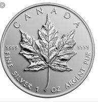 Silver Maples and coins